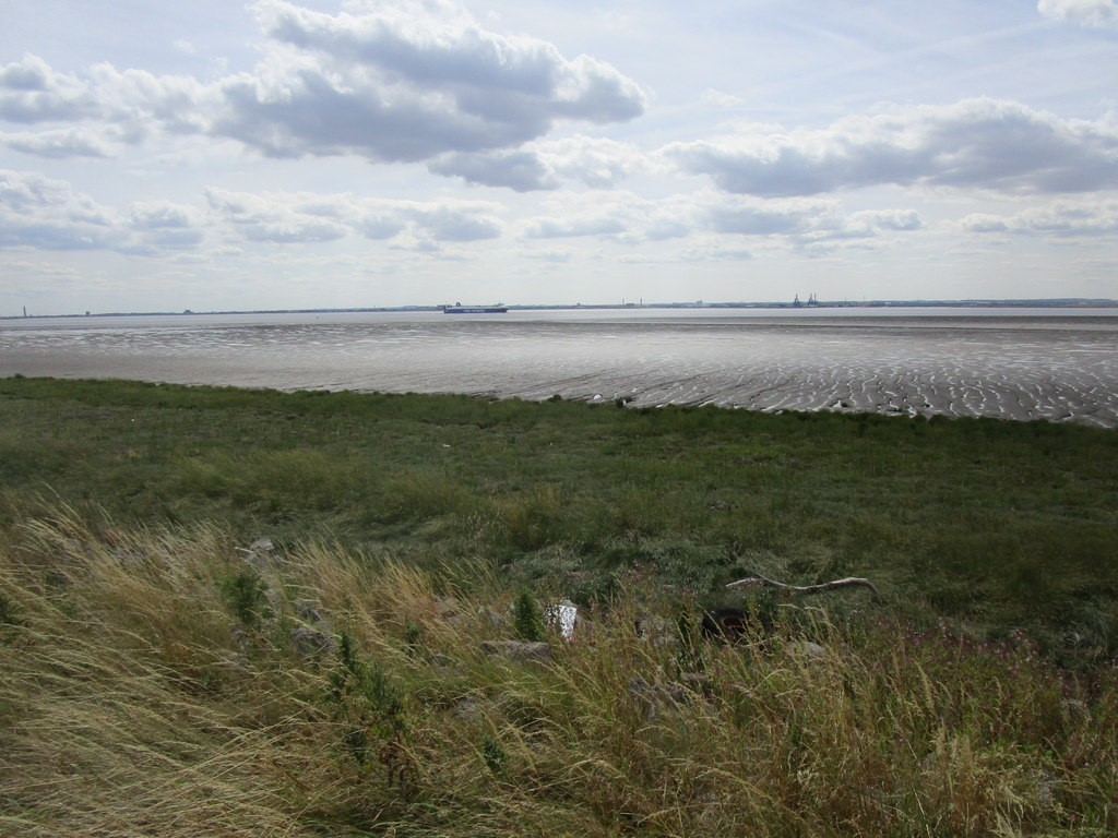 Looking out into the Humber Estuary from Sunk Island in the north